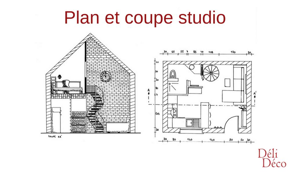 plan et coupe rez de chaussée studio étudiant