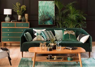 ssociation vert sapin et noir dans le salon