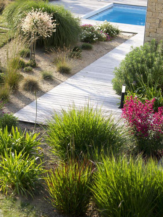 jardin sec graminées