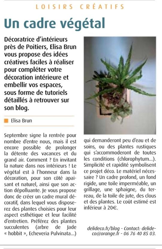 article tuto cadre végétal