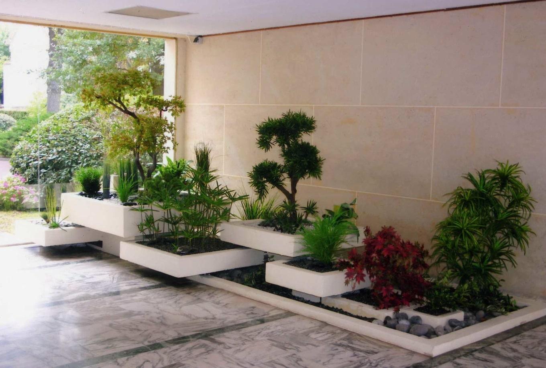 végétaux d'intérieur