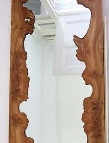 miroir dans un arbre creux