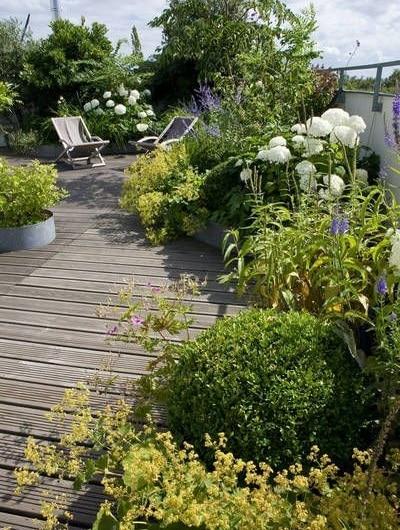 Accumulation de végétaux terrasse